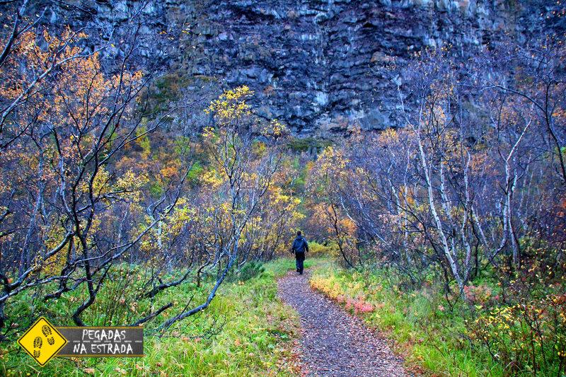 Ásbyrgi Canyon, Islândia. Foto: CFR / Blog Pegadas na Estrada