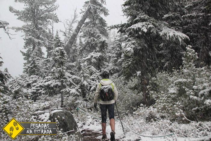 Joffre Lakes Provincial Park Whistler