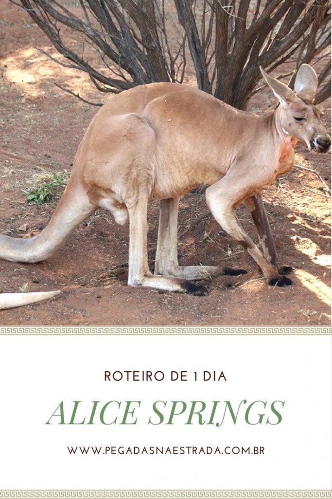 Conheça Alice Springs, a porta de entrada para as paisagens incríveis do Outback Australiano.