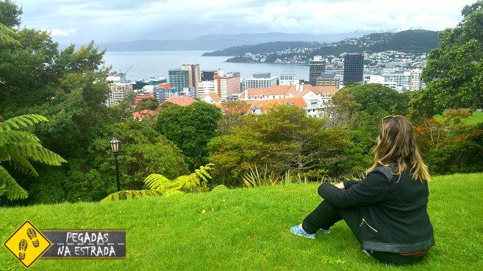 Wellington em 2 dias