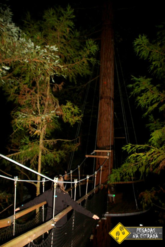 Reedwoods Treewalk