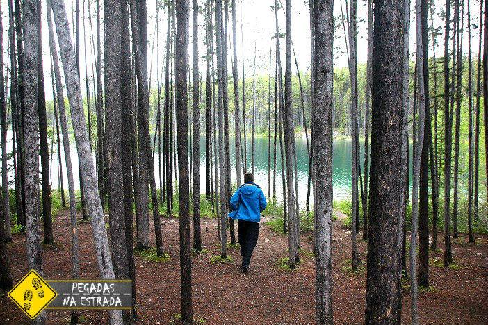 Hebert Lake Jasper