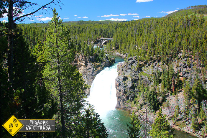 Upper Falls View Yellowstone National Park