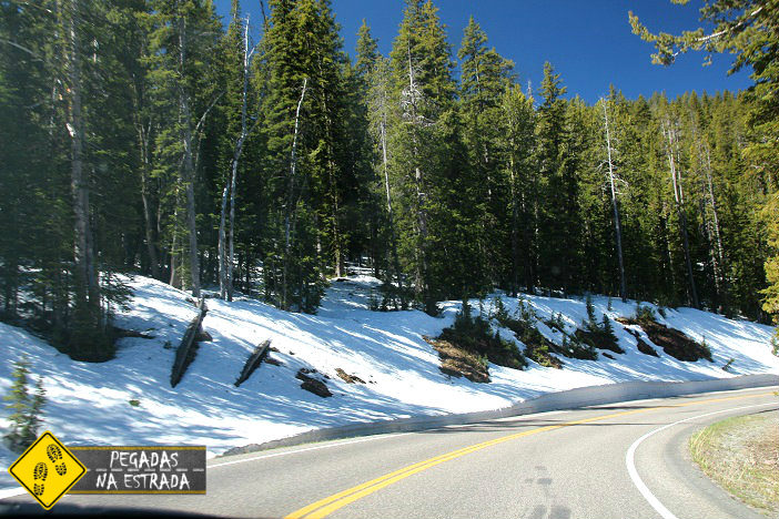 roteiro viagem turismo Yellowstone National park