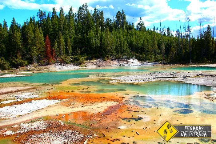 Norris Geyser Basin. Foto: CFR / Blog Pegadas na Estrada