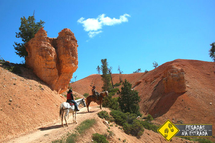 Cowboy Horse Bryce Utah