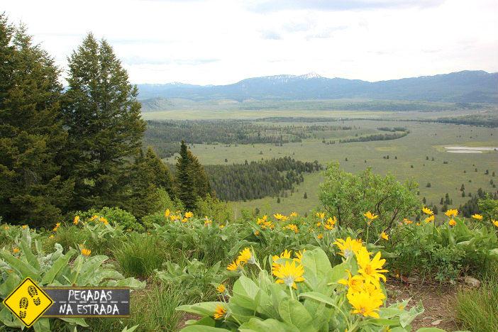 road trip parques nacionais americanos