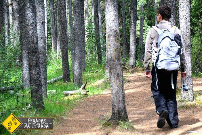 turismo viagem roteiro Canadá lagos montanhas
