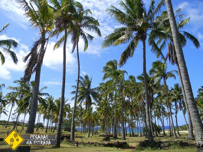 Praia Anakena