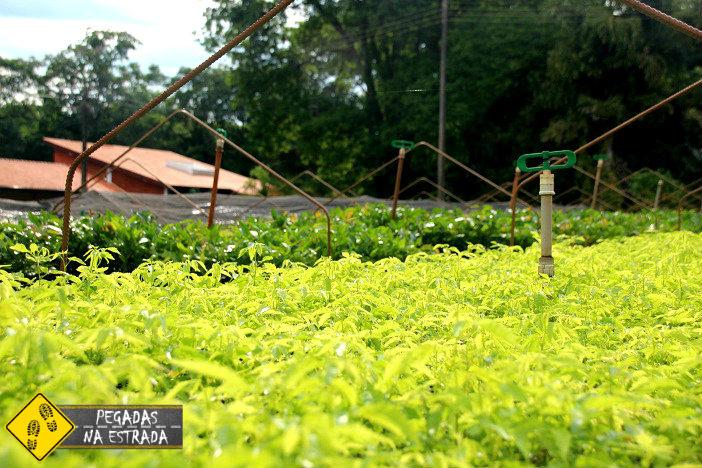 Usina de Itaipu turismo sustentável