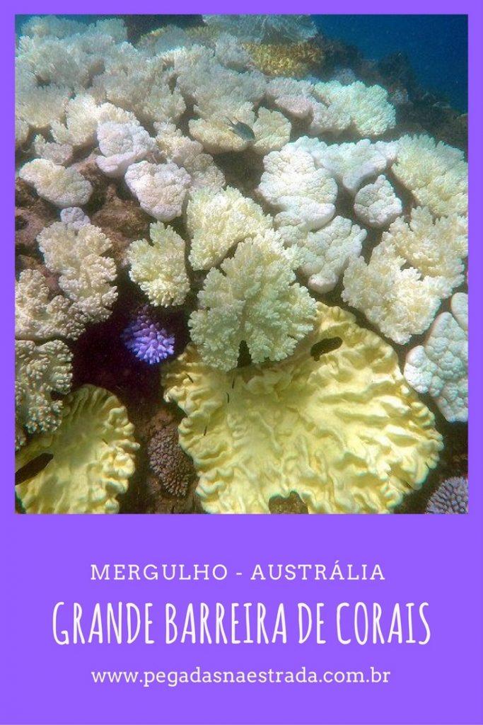 Mergulhe na famosa Grande Barreira de Corais da Austrália, relaxe na lindíssima Green Island e curta as principais atrações de Cairns.