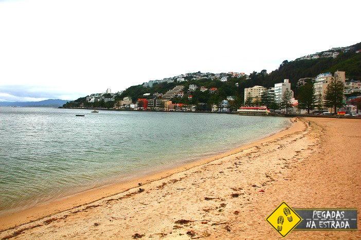 Roteiro de 2 dias em Wellington
