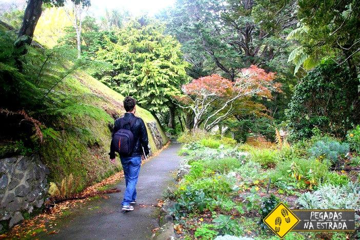 O que fazer em Wellington