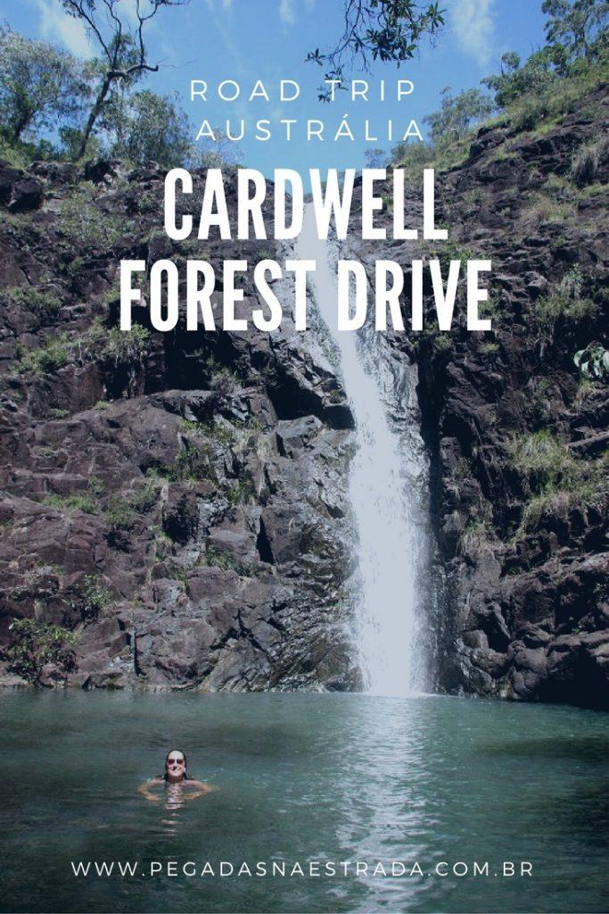 De Mission Beach a Cardwell: conheça praias paradisíacas e florestas tropicais. Nade em piscinas naturais de águas verdes e se encante com a natureza!