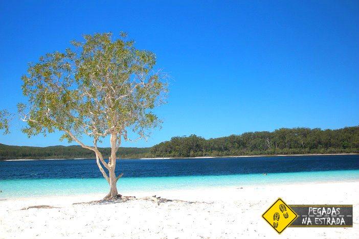 Fraser Island Dicas Roteiro