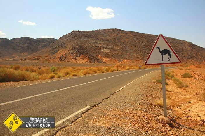 dirigir no marrocos estradas