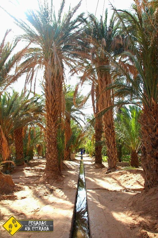 água no deserto do Saara Marrocos turismo experiência