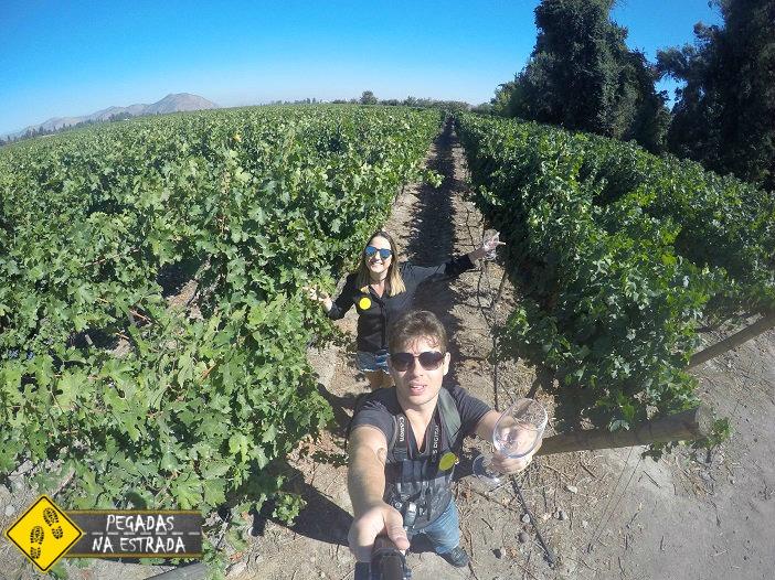 Concha y Toro vinícola Chile Santiago