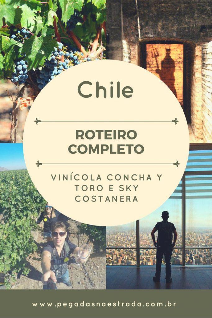 Quem vai à capital chilena precisa separar 1 ou mais dias para conhecer as melhores vinícolas de Santiago e arredores. A boa notícia é que parte dessas vinícolas é facilmente acessada de transporte público e está a uma curta distância do centro de Santiago. Conheça agora a mais famosa delas: Concha y Toro!