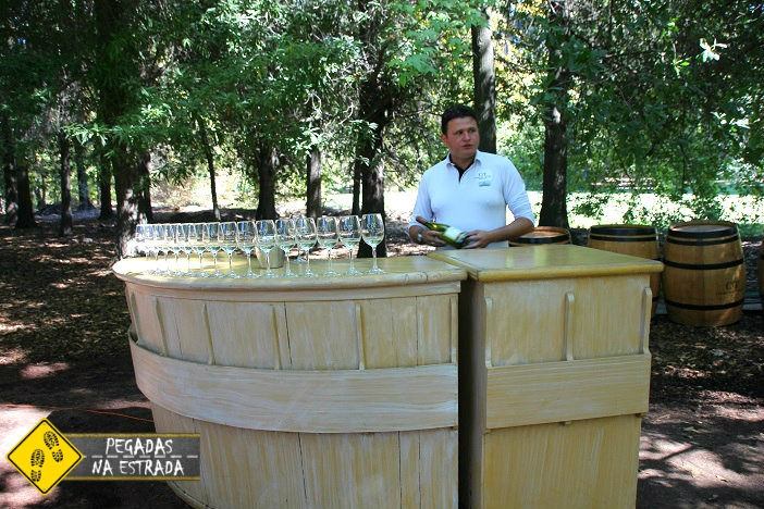 Primeira degustação:Sauvignon Blanc do Marques de Casa Concha Concha y Toro