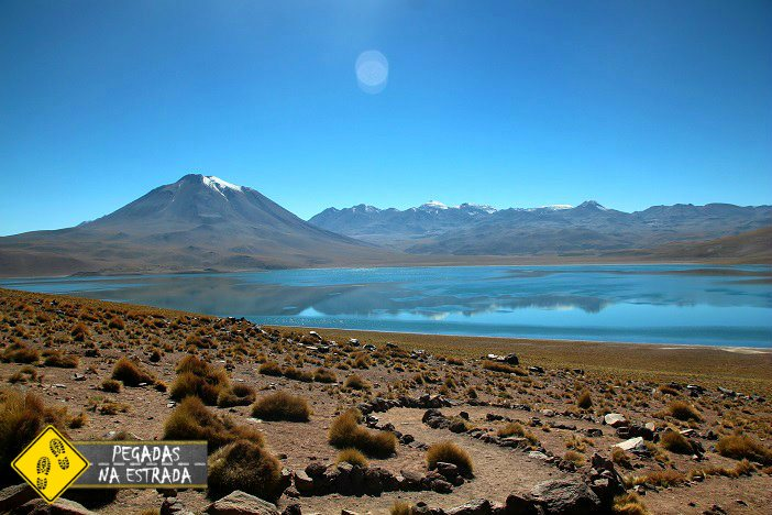 LagunaMiscanti Atacama chile