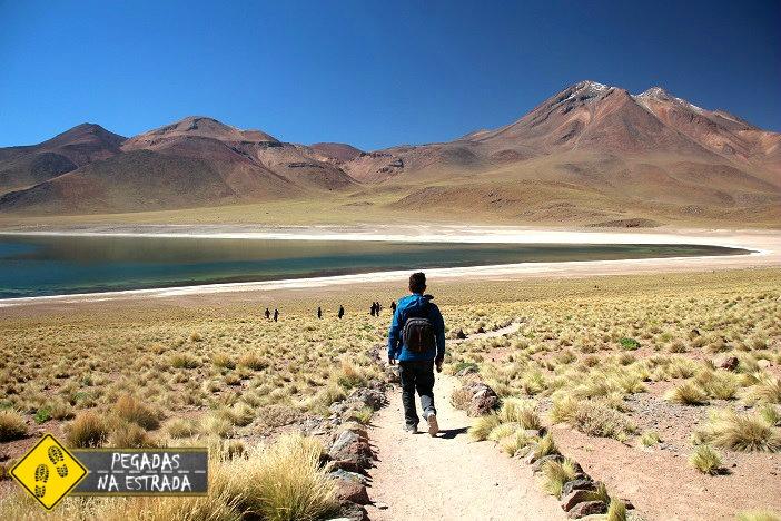 excursão LagunaMiscanti, Atacama Lagunas Altiplânicas