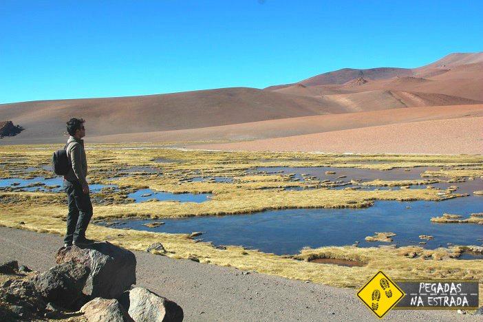 Laguna de Quepiaco passeio Salar de Tara