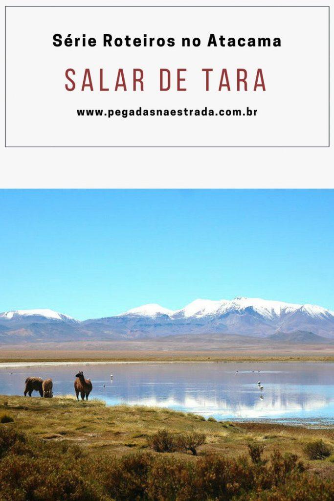 O Salar de Tara é um dos passeios mais incríveis do Deserto de Atacama e está localizado a uma altitude de cerca de 4.400 metros. No post de hoje, conheça todas as atrações desse passeio, como chegar e onde se hospedar. Este post faz parte da série: Roteiros no Atacama.