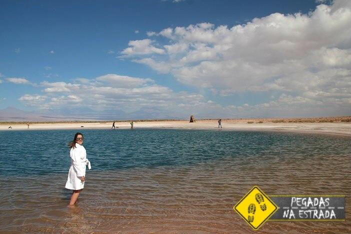 Laguna Cejar Deserto de atacama