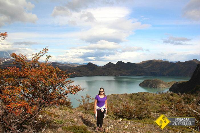 Lago NordenskjoldCircuito W Torres del Paine