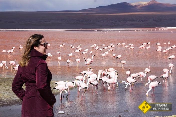 Laguna Colorada Salar de Uyuni Bolívia