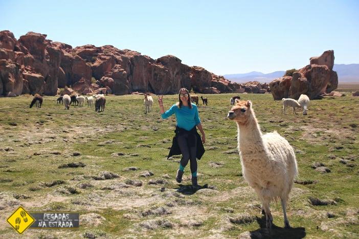 vida selvagem Bolívia